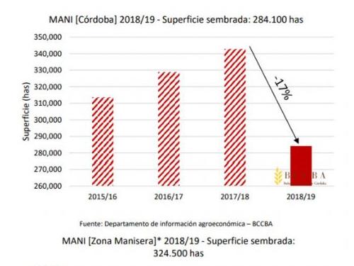 2019 crop plantings Argentine crop